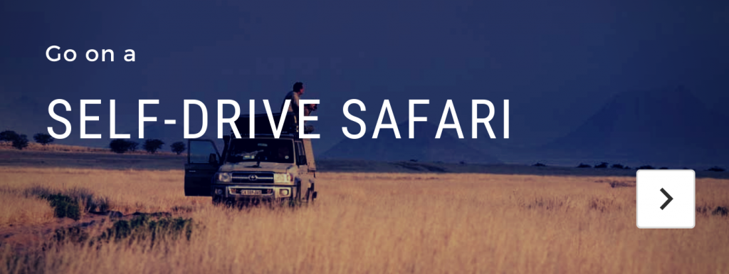 self drive african safari