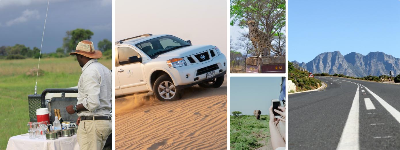self drive safari in South Africa