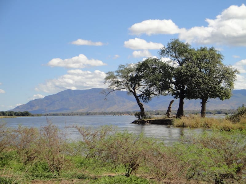 island_in_the_zambezi_river_at_mana_pools_national_park-1