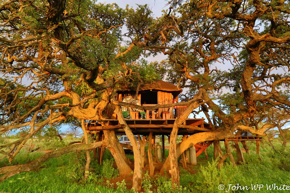 One of the best treehouse getaways