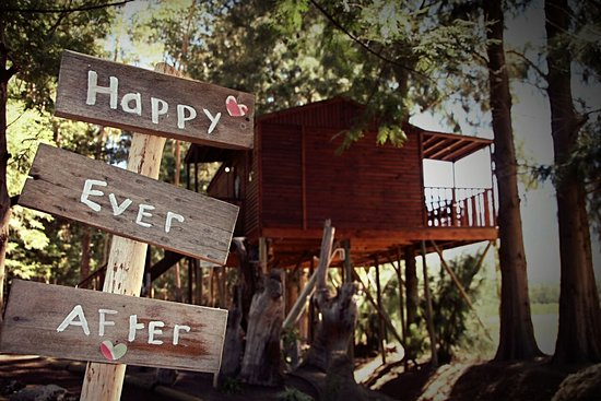 Happy treehouse