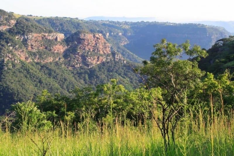 kloof-gorge-krantzkloof-nature-reserve