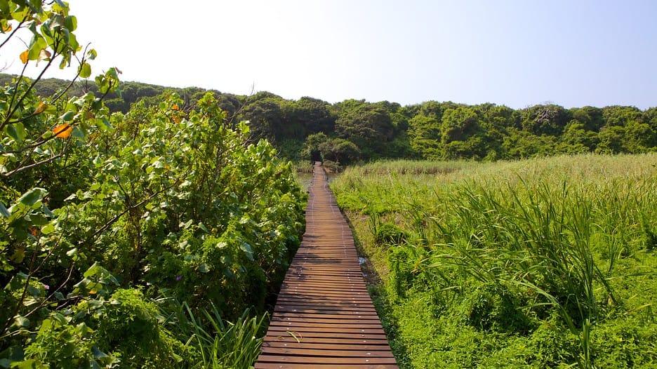 umhlanga-lagoon-nature-reserve
