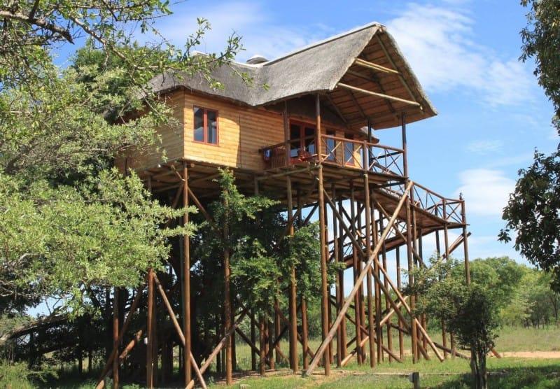 pezulu-tree-house-lodge