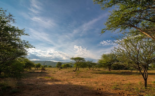 peace and quiet in namibia