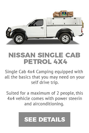 NISSAN-SINGLE-CAB-PETROL-4X4-MSEP