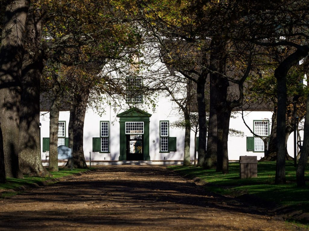 constantia wine route - cape town