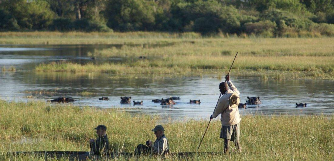 Makoro in Botswana on the Okavango Delta