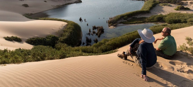 The peaceful austere of the Hoanib River deceives its biodiversity