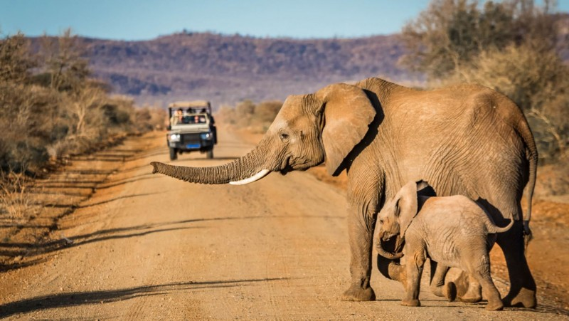 Self-drive through Namibia is an unforgettable experience