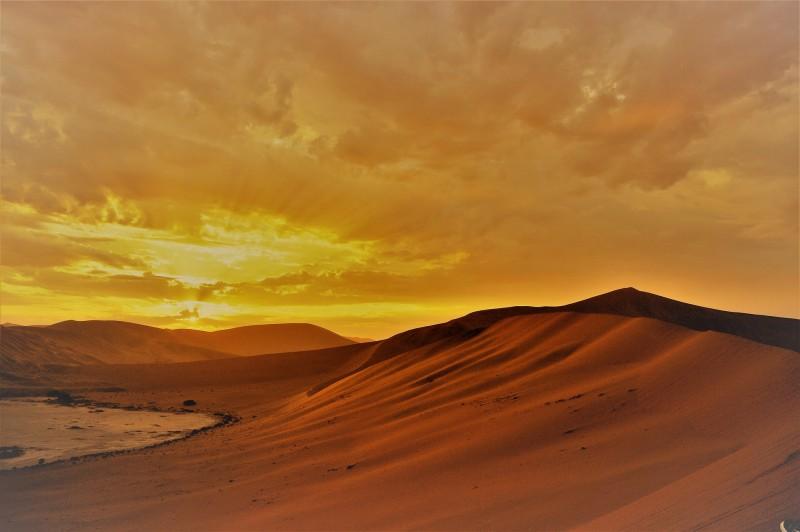Namib Desert paints a striking portrait