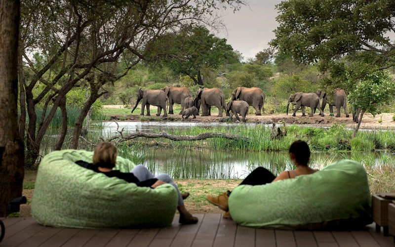 South Africa's game parks, and the best wildlife-viewing in April