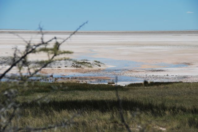Etosha Pan is a sight to behold