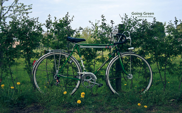 Going green bicycle