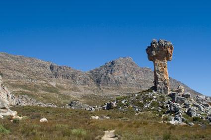 Maltese Cross Cedarberg