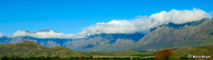 Tulbagh Cape Wine Route