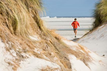 Ryan Sandes Running